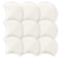 Scale Shell White 12x12.png