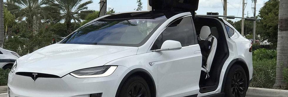 Tesla Model X 100D 2017