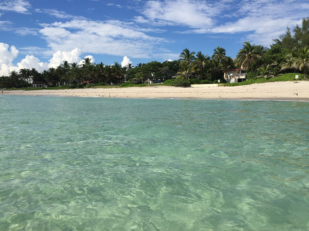 Погода в Майами