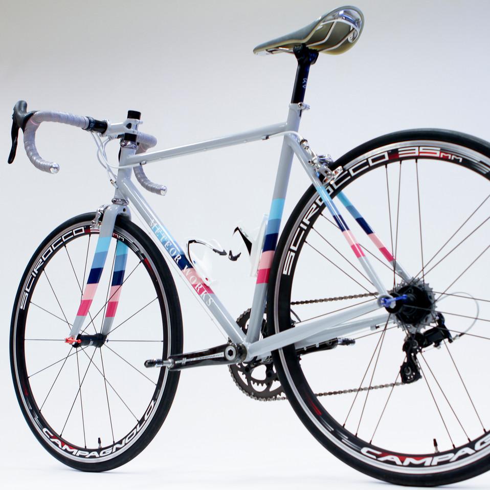 Lee's Winter Bike