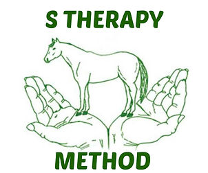S Therapy Method.jpg