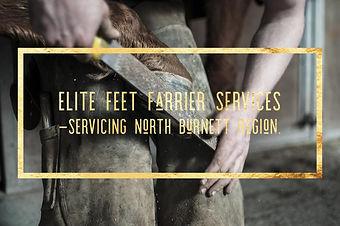 Elite Feet Farrier Services.jpg