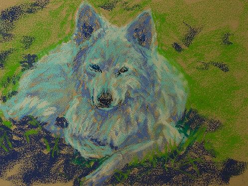 """Wolf rest""(Lynne Bedbrook)"