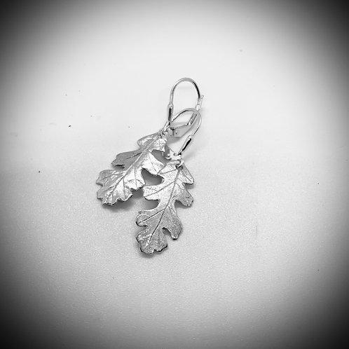 Small Silver Oak leaf drop earrings (Anna Ferrabee)