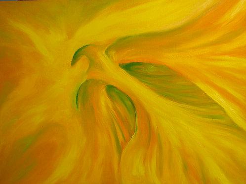 """""""Hibiscus""""(Lynne Bedbrook)"""