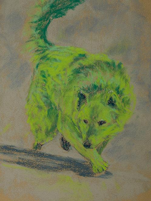"""""""Wolf turn""""(Lynne Bedbrook)"""