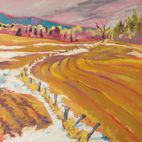 """""""Fall fields""""(Lynne Bedbrook)"""