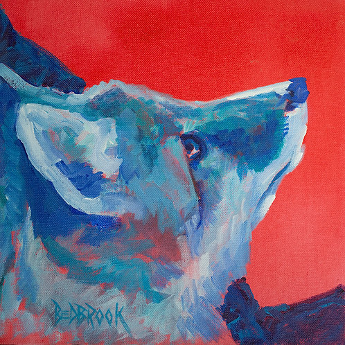 """""""Blue boy""""(Lynne Bedbrook)"""