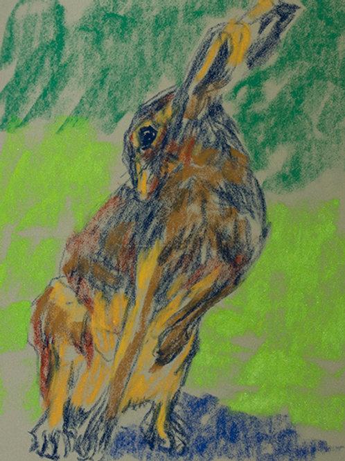 """Bunny 3""(Lynne Bedbrook)"