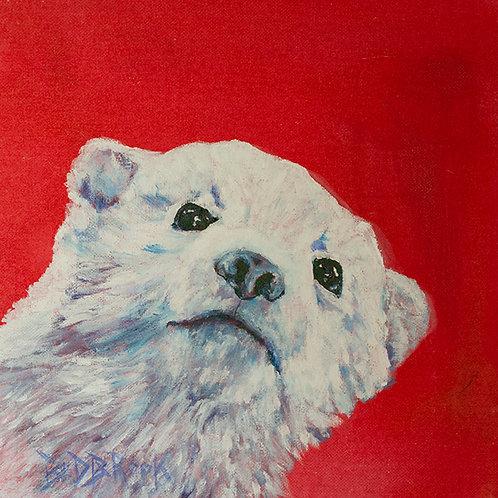"""Bear cub""(Lynne Bedbrook)"