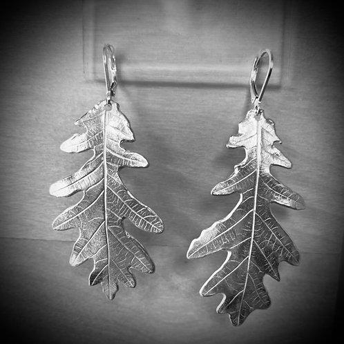 Large Silver Oak leaf drop earrings (Anna Ferrabee)