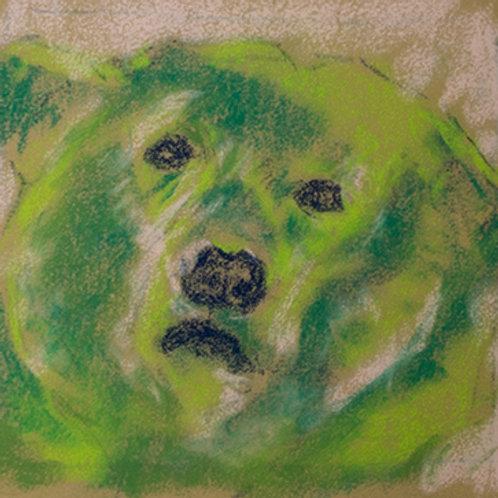 """Green bear""(Lynne Bedbrook)"