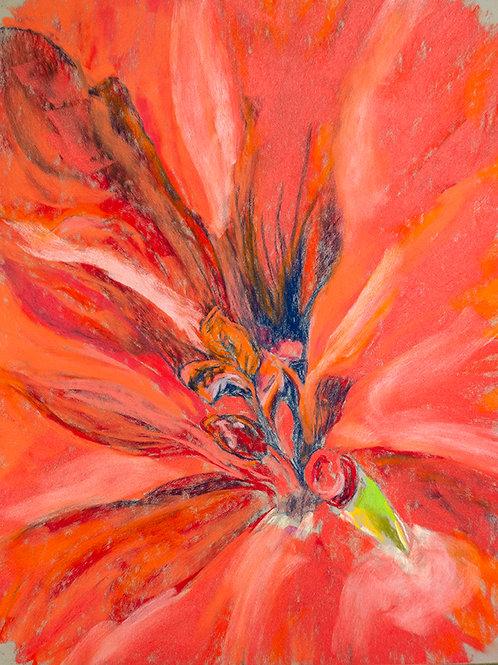 """Geranium""(Lynne Bedbrook)"