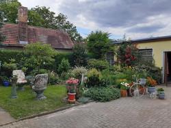 Garten 25 (5)
