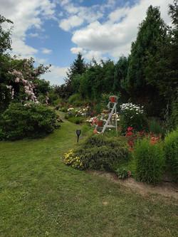 Garten 25 (3)