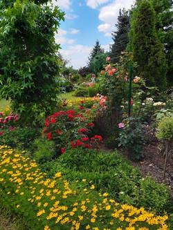 Garten 25 (2)