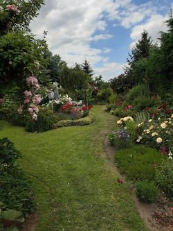 Garten 25 (4)