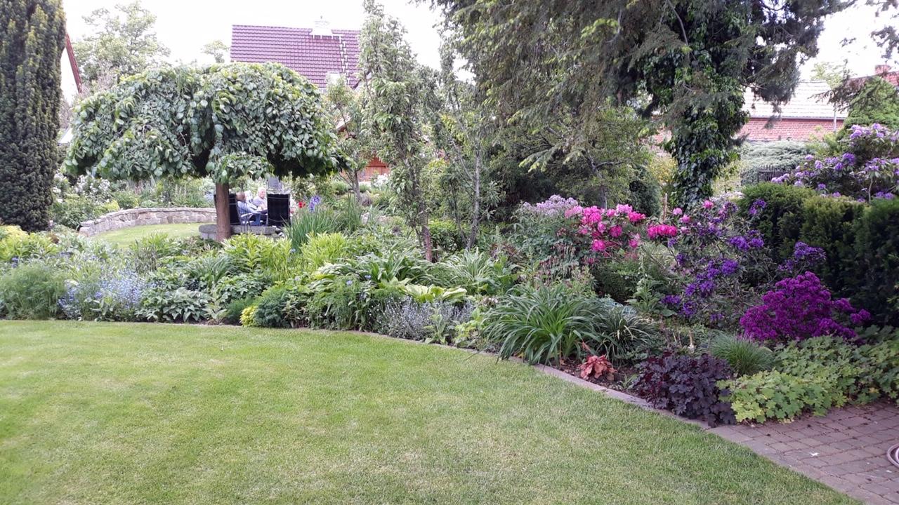 Garten26 (3)