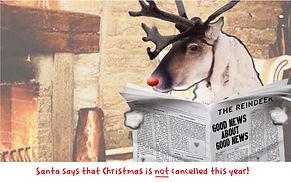 reindeer front.jpg