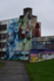 Street Art City Fresques extérieures