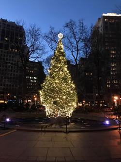 Christmas Tree at Union Square