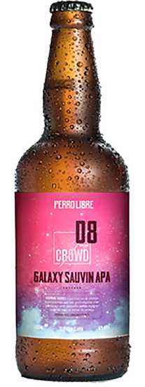GALAXY SAUVIN AMERICAN PALE ALE - CROWD 08