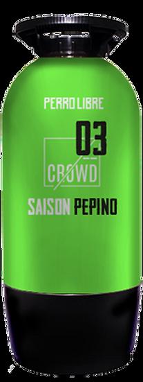 SAISON PEPINO - CROWD 03