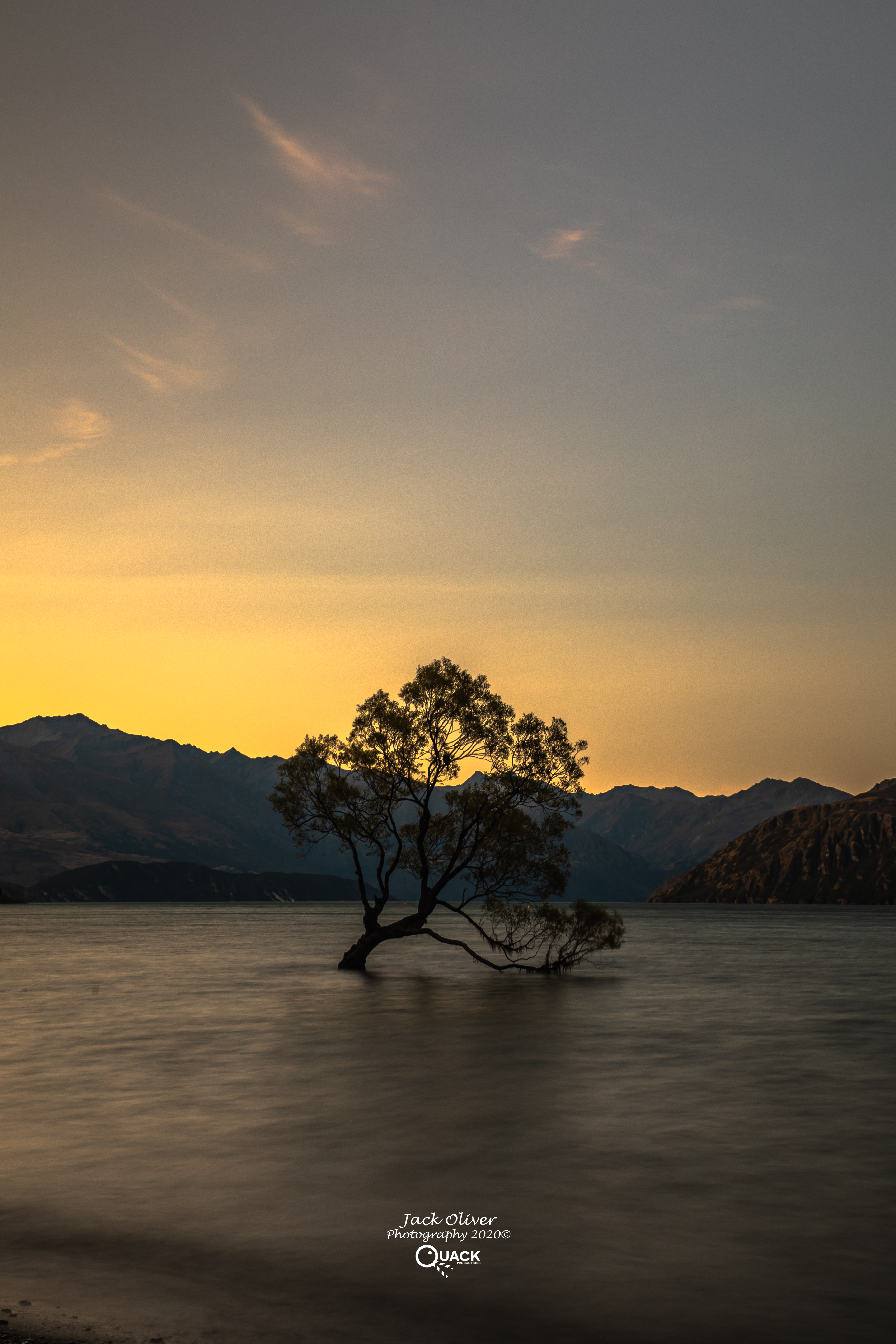 THE WANAKA TREE AND THE GOLDEN SUNSET