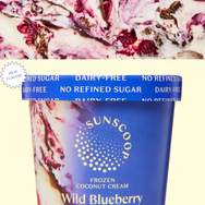 Blueberry Crumble Sunscoop