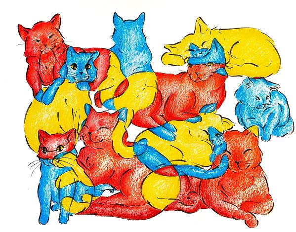 Feline Basics.jpg