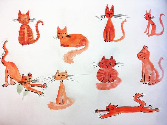 Sunburn Cats