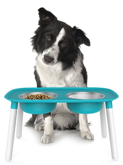 Elevated Feeder by Messy Mutts