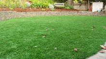 Como Elegir el césped mas adecuado para mi jardín. Super Grass
