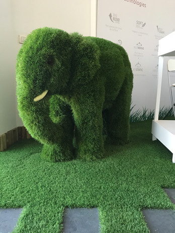 Animal cesped artificial
