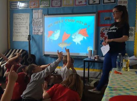 Meet Sharks4Kids Regional Ambassador Amie Williams
