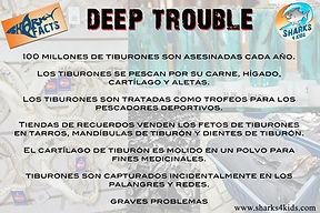 deeptroubleff Spanishlow.jpg
