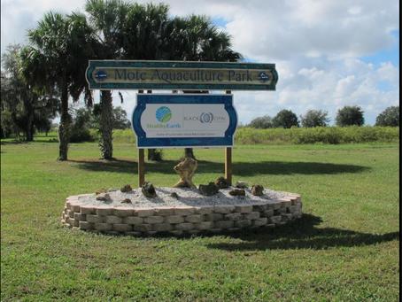 A visit to Mote's Aquaculture Park
