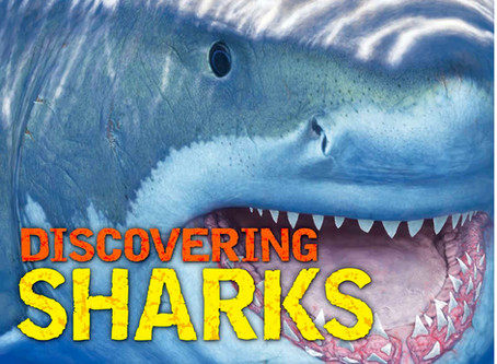 Book Review: Discovering Sharks