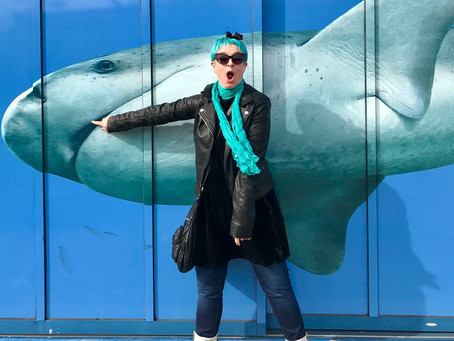 Shark Week: Meet Author Ame Dyckman