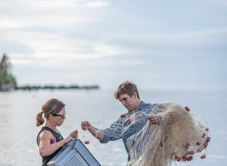 Meet Shark Biologist Dr. Jodie Rummer