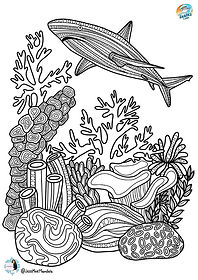 reef shark coloring page low.jpg