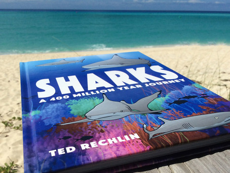 Book Review: Sharks a 400 Million Year Journey