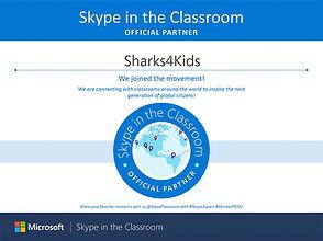 Skypepartner.jpg
