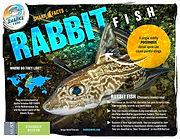 Rabbit fish facts low.jpg
