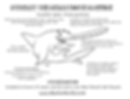 Smalltooth sawfish coloring sheet