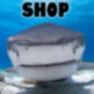 Shark Shop.jpg