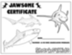 certificate3low.jpg