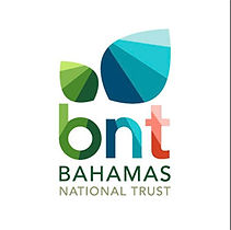 BNT logo.jpg