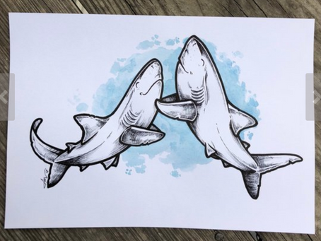 Shark Lovers Holiday Gift List