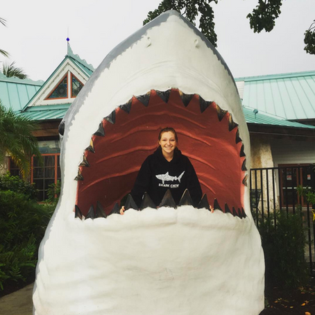 Meet Sharks4Kids Regional Outreach Director Michelle Andersen
